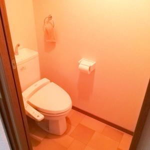 トイレ マット いらない